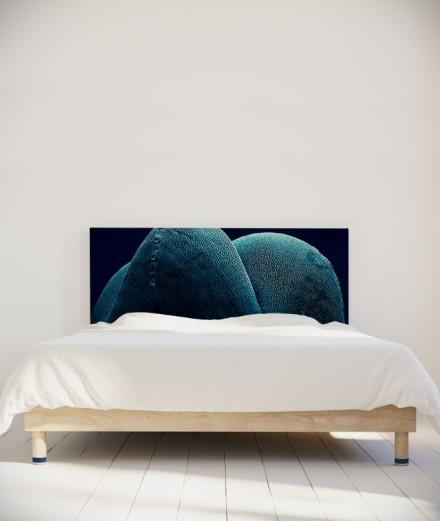 Tête de lit 160 cm Bleu Paola Guigou Cacteros I