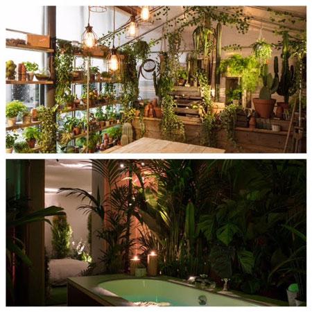 Airbnb maison greenery