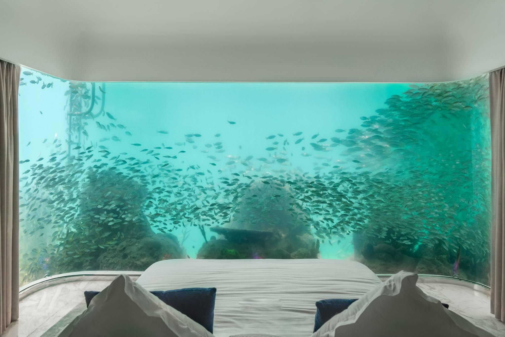 seriez vous pr t e dormir sous l 39 eau myquintus. Black Bedroom Furniture Sets. Home Design Ideas