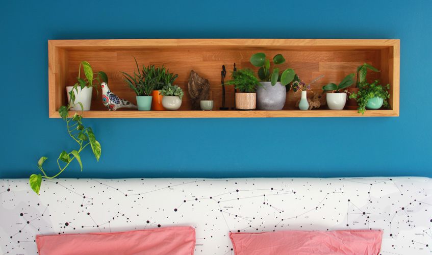 chambre plantes depolluantes purifiantes air