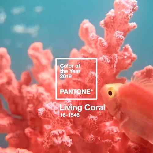 couleur-pantone-2019-living-coral-deco
