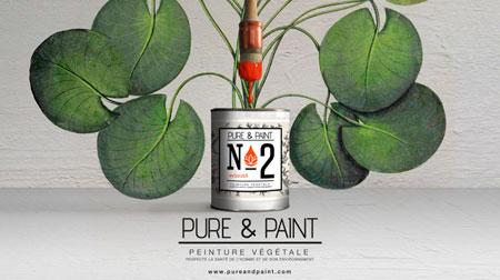 pure & paint peinture