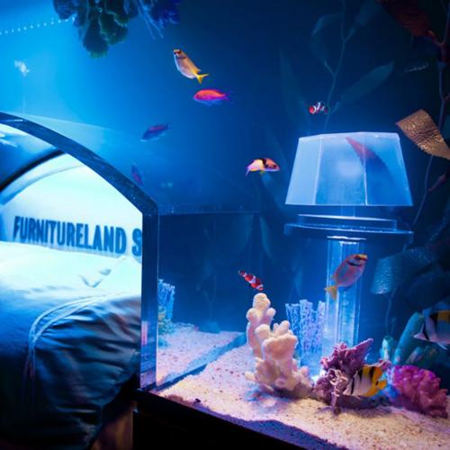 aquarium insolite free camion aquarium with aquarium