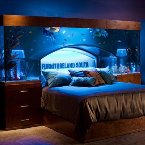 tete-de-lit-aquarium