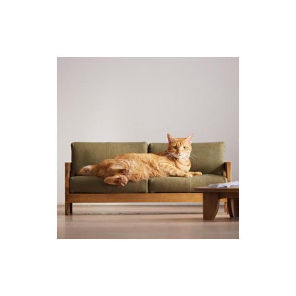 Literie insolite : du mobilier miniature pour nos amis les chats